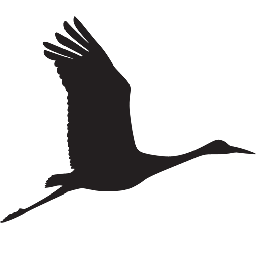 Crane Web Design